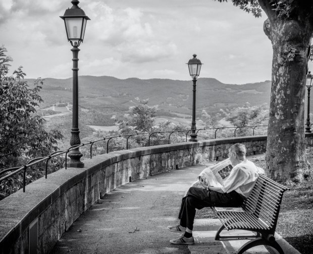 Newspaper Reader Overlooking Vineyards-Tuscany